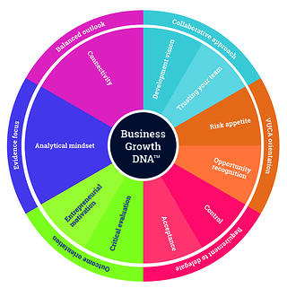 Business Growth DNA - 17 Critical Factors.jpg